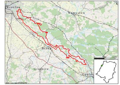 Grądy Odrzańskie, źródło: RDOŚ Opole