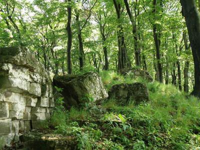 wapienne ściany skalne, autor: Karolina Olszanowska-Kuńka