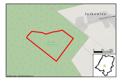 Rezerwat przyrody Jaśkowice, źródło: RDOŚ Opole